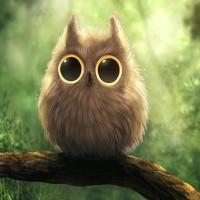 Cute_Owl-wallpaper-10609673