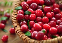 zurawina-owoce