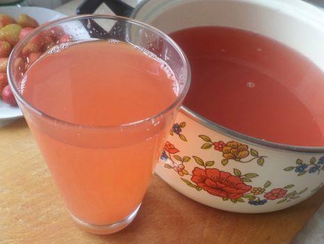 Przepis: Kompot truskawkowy z rabarbarem
