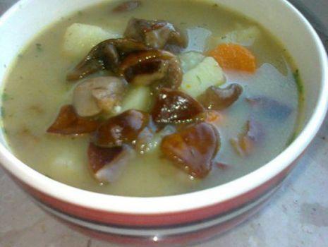 Przepis: Zupa z grzybkami lesnymi