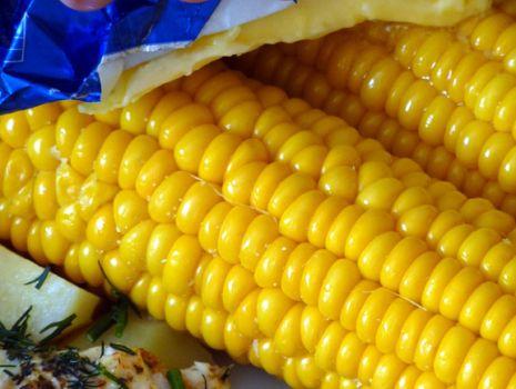 Przepis: Gotowana kukurydza