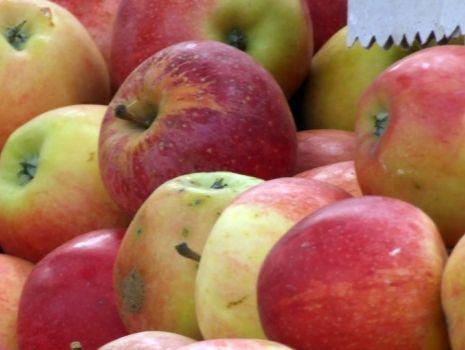 Przepis: Placek cebulowy z jabłkami