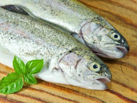 Przepis: Ryba zapiekana