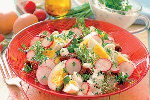 Sałatka z jajkiem i rzodkiewkami